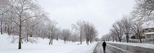 2013-02-26-dougherty-021-snow