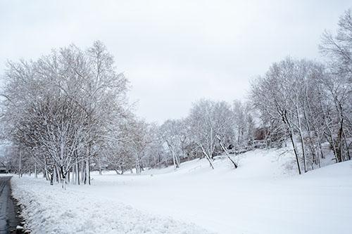 2013-02-26-dougherty-025-snow