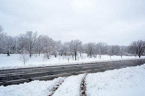 2013-02-26-dougherty-029-snow