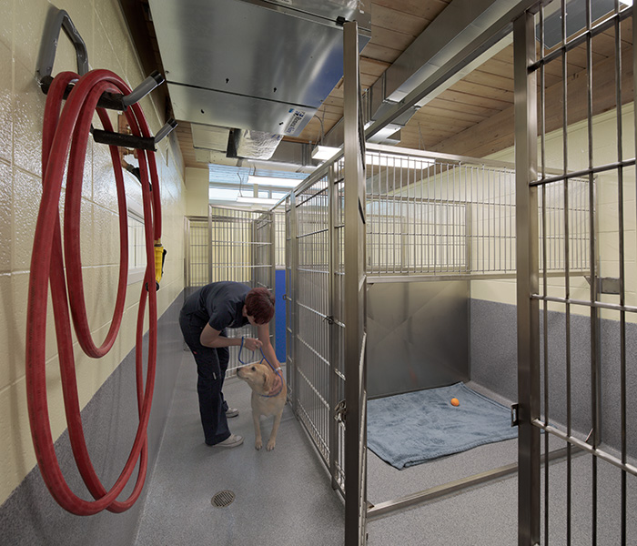 Bradley Animal Hospital